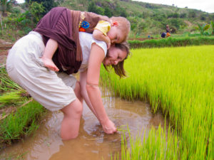 Lora's working in the rice field with Matimu strapped to her back!