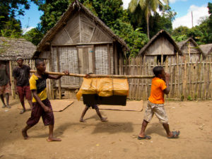 """Carrying a speaker into Antenina by bamboo pole, to be used at a """"tsaboraha""""."""