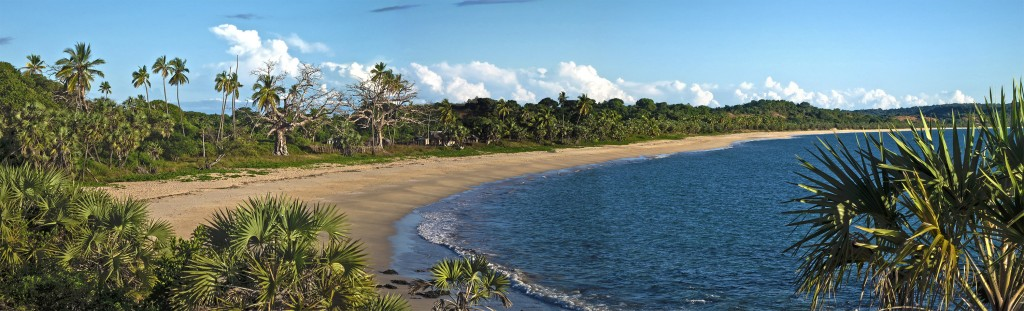 A panorama of the beach where our village is. Our house is the most prominent one - behind the palm trees in the middle of the photo.