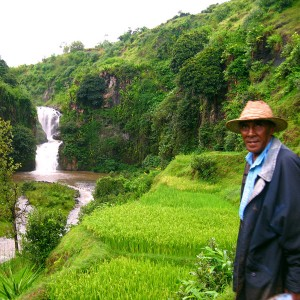 Madagascar 2 photos - our guide when hiking through the ricefields and waterfalls of Betafo