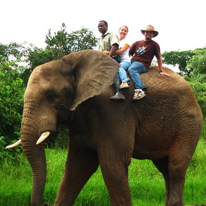 South Africa - Best Of Photos - riding an elephant near Kruger National Park